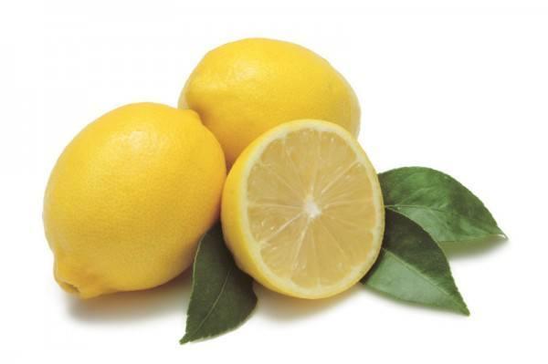 dulce-de-limon-limones