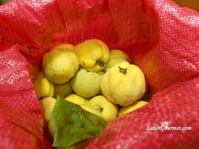 fruta de membrillo (1)