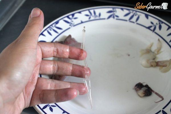 limpiar-calamares-pluma