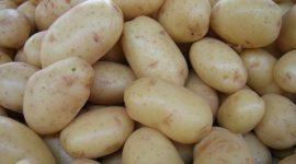 Patatas: tipos y variedades