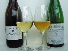 Tipos de vino: blancos