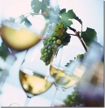 vino_blanco717981_thumb.jpg